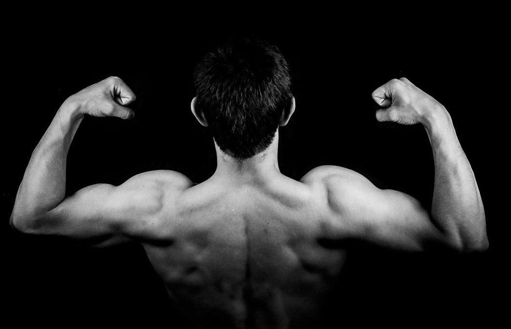 Über Muskeltonus, Palpation und das Muskeltesten